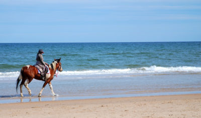 Horse Riding Activities Near Gleeson's Holiday Park, Arklow, Co. Wicklow.